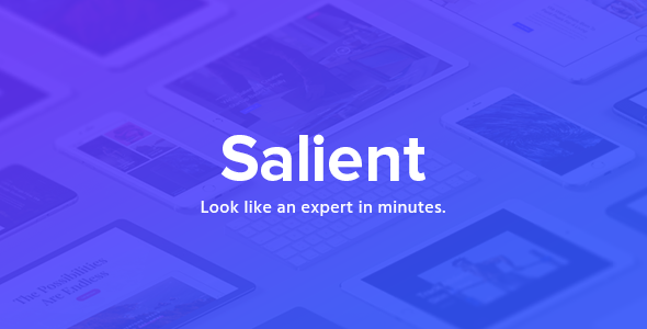 Salient (13.0.5) - Responsive Multi-Purpose Theme